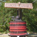 Nevezési felhívás a városi borversenyre