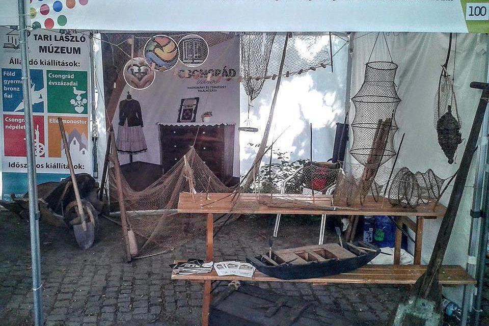 Csongrádi siker a Múzeumok Majálisán