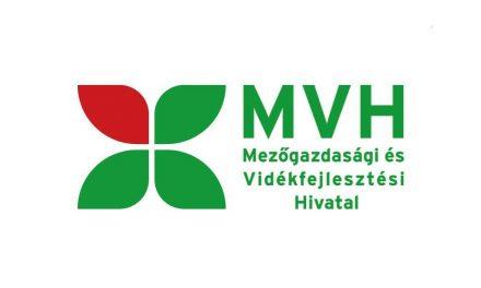 Megszűnik az MVH