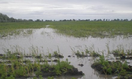 I. fokú belvízvédelmi készültség