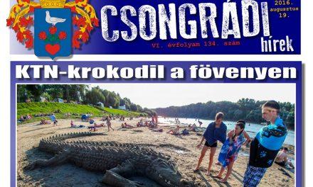 Letölthető a Csongrádi Hírek legújabb, augusztus 19-én megjelenő (134.) száma