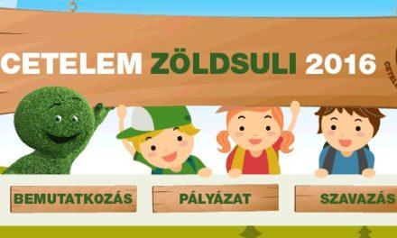 Cetelem Zöldsuli 2016