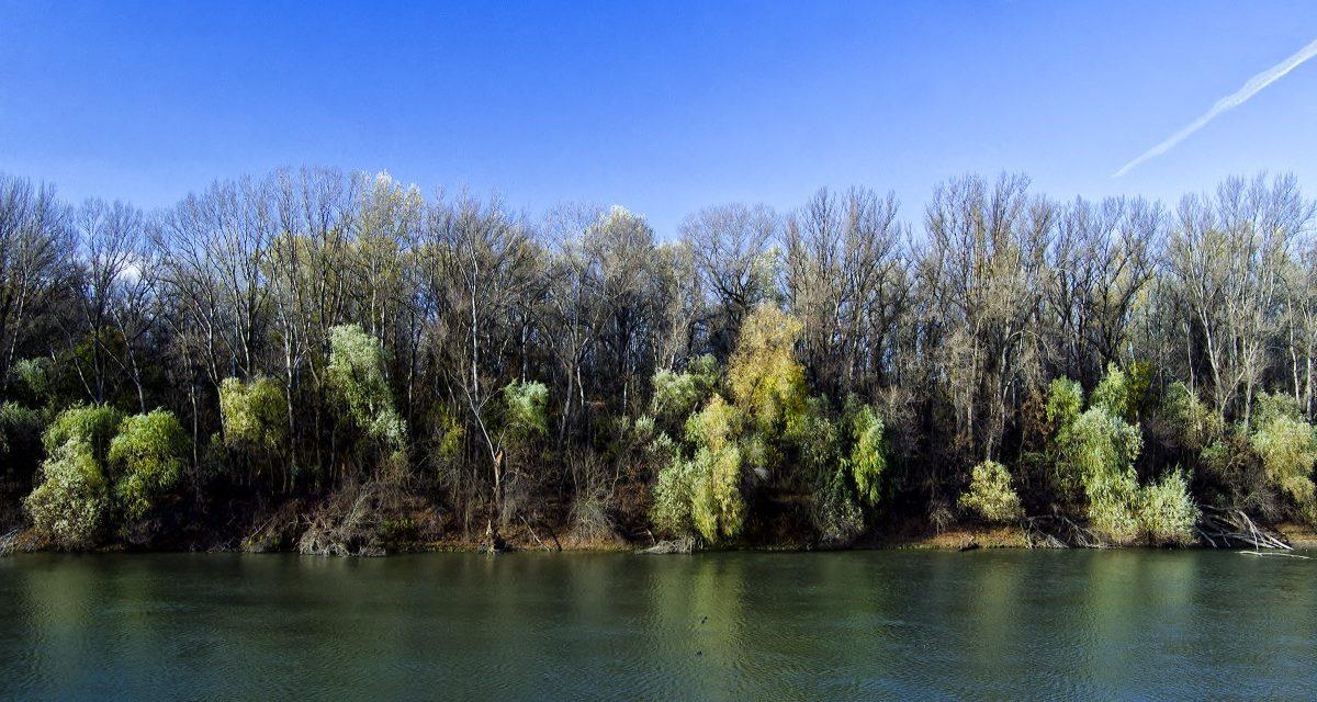 Intenzív vízszintemelkedés a Tiszán!