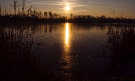 Januári Holt-Tisza és kezdődő jégzajlás a Tiszán (képgaléria)