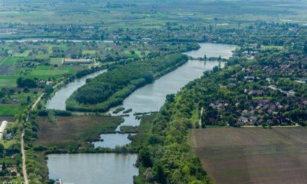Serházzugi Holt-Tisza és az Aranyszigeti erdő természeti értékeinek felmérése