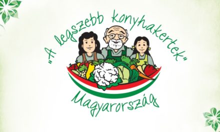 A legszebb konyhakertek