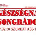 Egészségnap Csongrádon