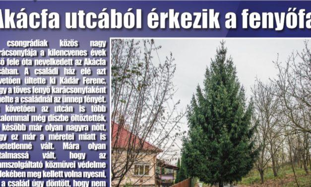 Megtekinthető a Csongrádi Hírek legújabb, november 24-én megjelenő (167.) száma