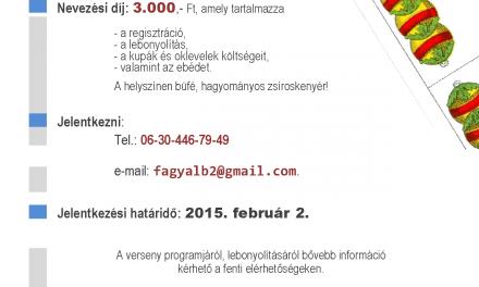 Ultiverseny 2015.február 2.