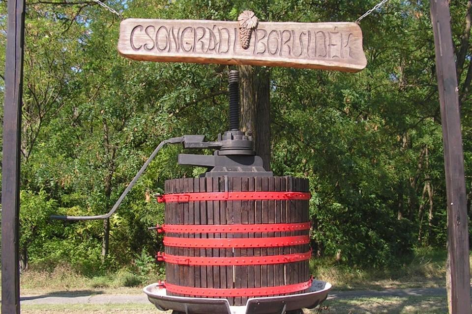 Nevezési felhívás megyei borversenyre