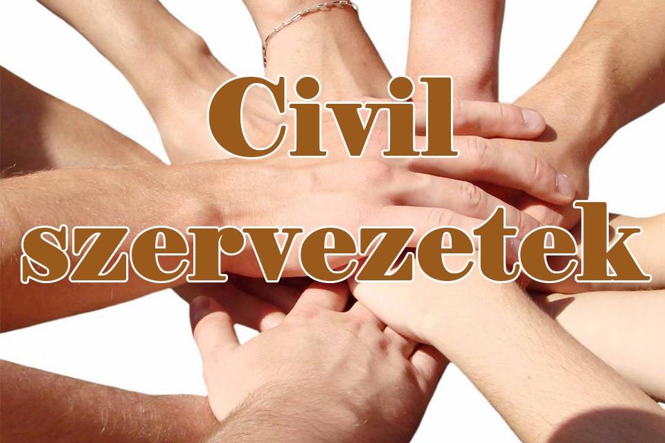 Pályázat civil szervezetek részére | Csongrád