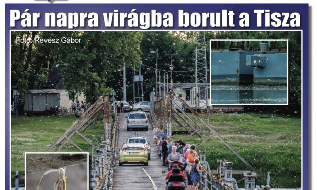 Megtekinthető a Csongrádi Hírek legújabb, június 22-én megjelenő (182.) száma