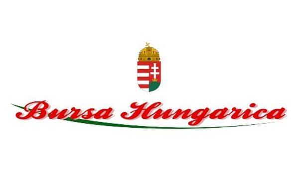 BURSA Hungarica Felsőoktatási Ösztöndíjpályázat