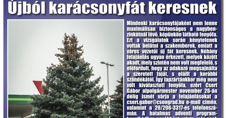 Megtekinthető a Csongrádi Hírek legújabb, november 23-án megjelenő (192.) száma