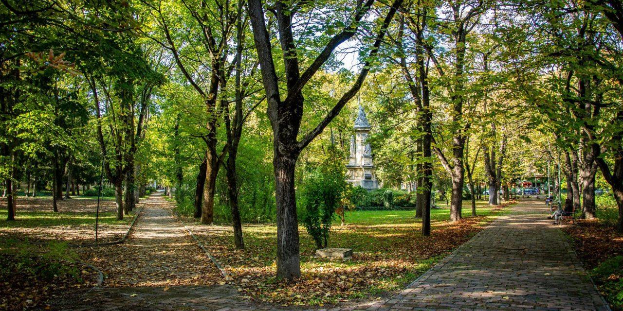 Csongrád környezeti állapota, környezet- és természetvédelmi lakossági kérdőívek összegzése