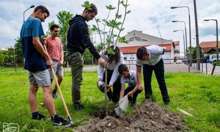 Fát ültettek a nemzeti összetartozás napján