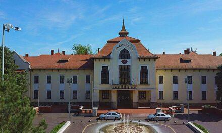 Bölcső Nagycsaládosok Csongrádi Egyesületének Pályázati Felhívása hátrányos helyzetű tanulók, fiatalok számára