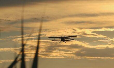 Légi kémiai és meleg-ködös földi szúnyoggyérítés Csongrád és Csongrád-Bokros belterületén